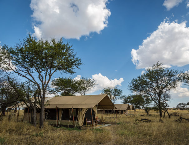 Camping tour, bush & beach safari,Road Less Traveled Safari