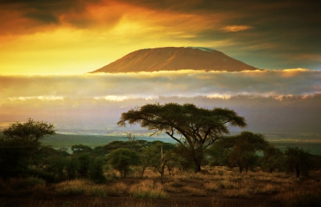 Mt. Kilimanjaro safari,Kilimanjaro Trekking safari, bush & beach safari , Road Less Traveled Safari
