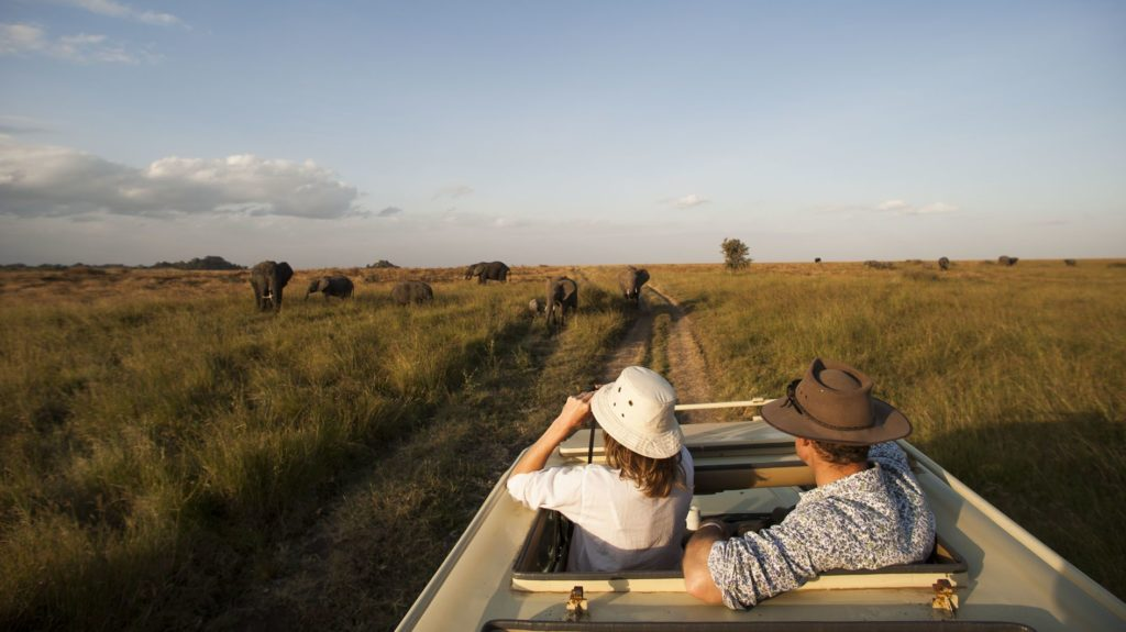 On a safari with Ombeni African Safaris