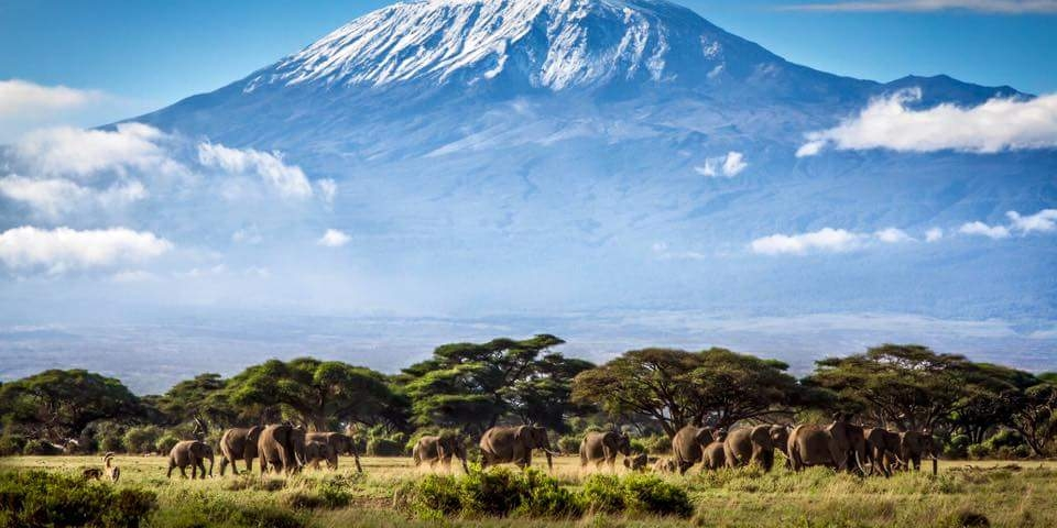 Mount Kilimanjaro Climbing Safari Package