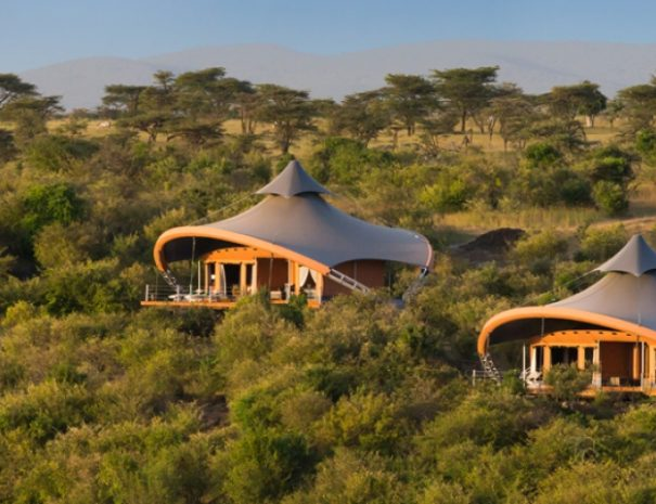 the heart of kenya safari | African Safari