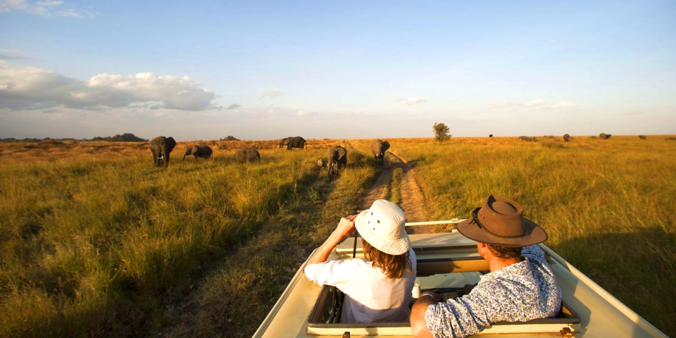 African Safari Packages