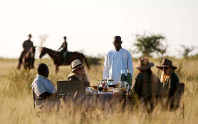 Safari ombeni safaris | Safari Package, Best Safari Destinations
